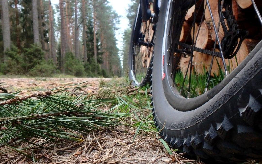 Pojezierze Brodnickie rowerem – mała pętla
