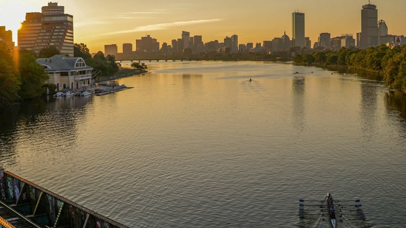 HOCR: How to call your race