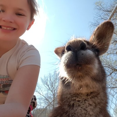 Child taking selfie with kangaroo on one animal adventure this is a great family vacation idea