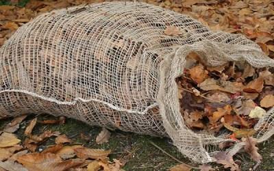 3 Ways to Utilize Fallen Leaves