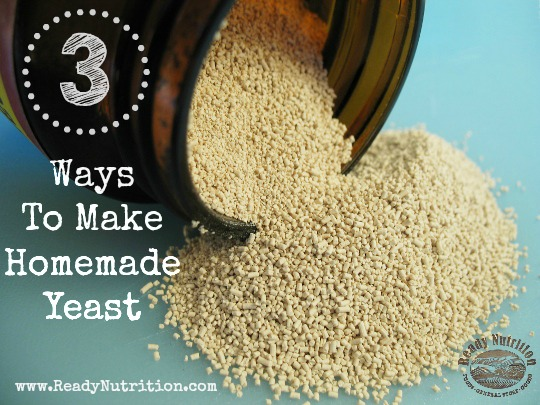Survival Food Series: 3 Ways To Naturally Make Yeast
