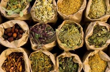 30 Most Popular Herbs for Natural Medicine