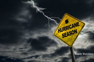 It is vital to be prepared and ready to go in the instance that an evacuation is ordered. This checklist has everything you need to get to safety.