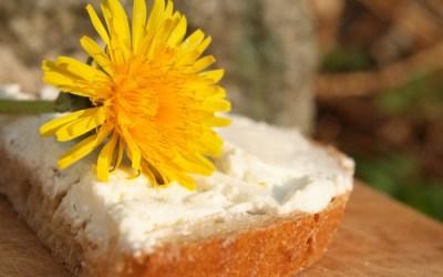 Dandelion Honey Bread