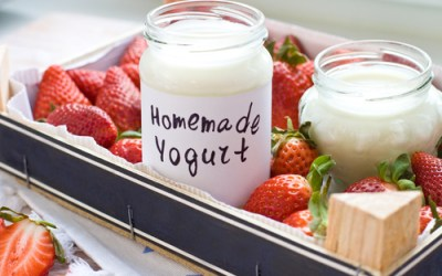 Cheat Sheet for Making Homemade Yogurt
