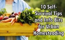 10 Self-Survival Tips and Info Bits for Urban Homesteading