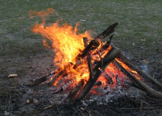 Image result for ready nutrition and fire