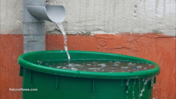 5 ways to save water in a drought-stricken world   Ready ...