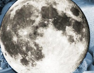Does Science Back Up Planting by the Cycles of the Moon?