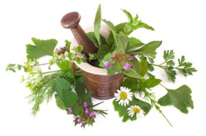 medicinal-herbs-how-to