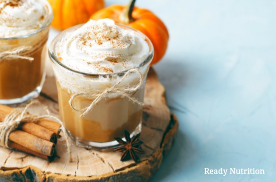 Try some of these delicious recipes the next time you have extra pumpkin! #ReadyNutrition