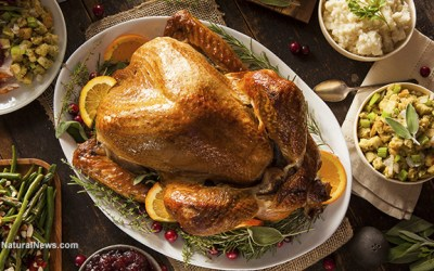 Is Thanksgiving food killing you?