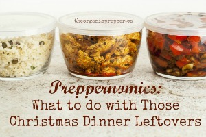 Preppernomics: What to Do with Those Christmas Dinner Leftovers