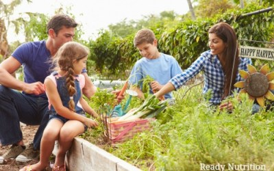 Are You Missing This Key Strategy In Your Family Preparedness Planning?