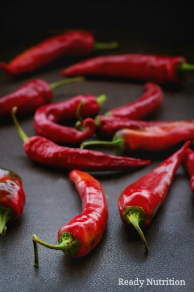 If you thought it strange that a person was eating hot peppers with their meal, science says they are loaded with all kinds of health benefits! #ReadyNutrition