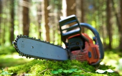 What the Prepper Needs to Know About the Usefulness of Chainsaws