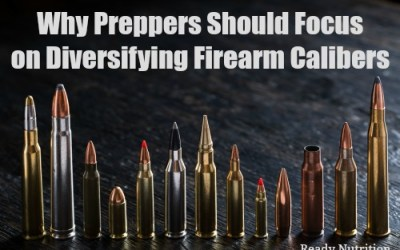 Why Preppers Should Focus on Diversifying Firearm Calibers