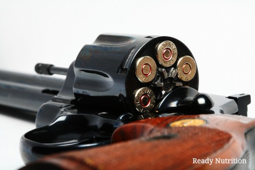 Could This Be the Most Versatile Firearm to Use in a SHTF Scenario?