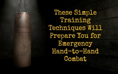 These Simple Training Techniques Will Prepare You For Emergency Hand-to-Hand Combat