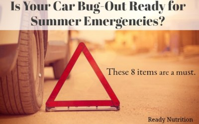 Is Your Car Bug-Out Ready for Summer Emergencies? These 8 Items are a Must!