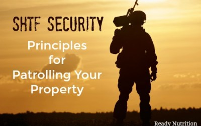 SHTF Security: Principles for Patrolling Your Property