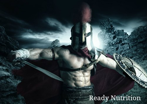 Lessons from the Roman Army for Post-SHTF Combat Operations