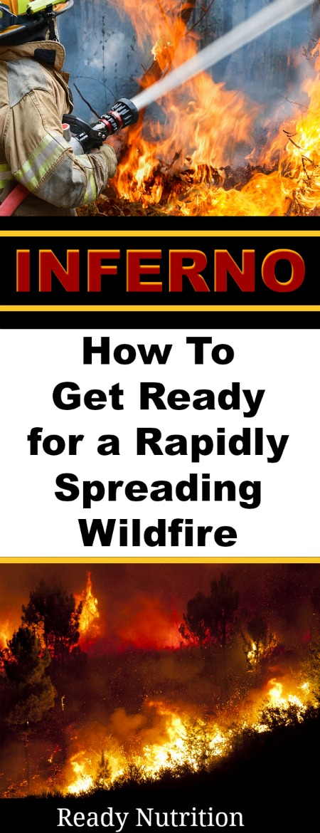 What if you are in one of the states that is experiencing wildfire activity, or if a fire should break out in your locale? Let's go over a few things that you can do to give you and your family a better chance.