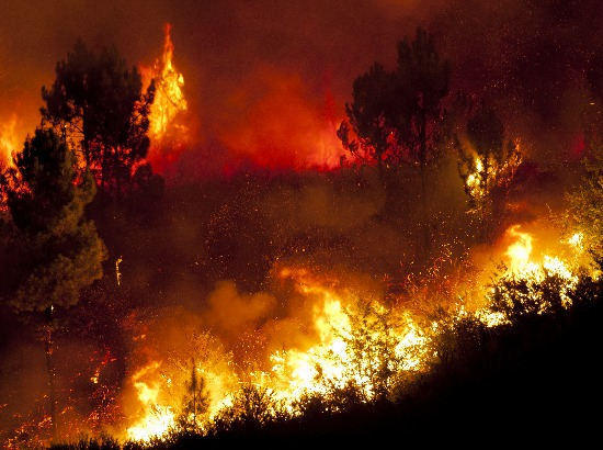 Over 100 wildfires are ravaging parts of the United States. It's only a matter of time before one of these could come to your neck of the woods. Are you prepared?