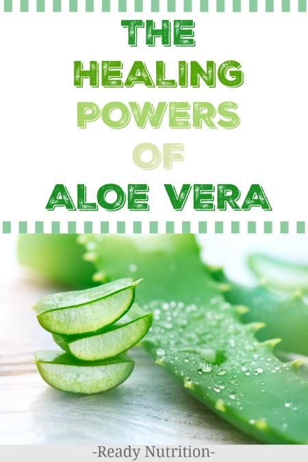 If you are interested in natural remedies, chances are you are familiar with aloe vera. Maybe you have used it after you've had too much sun, or you keep a tube of gel in your first aid kit for burns and wound care. But did you know the plant has many other uses?