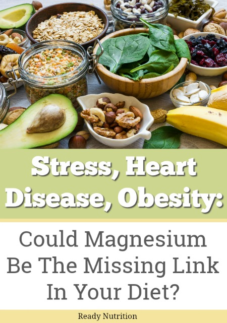 For balance in your diet, athletic performance, and overall health, Magnesium is a much-overlooked element that does far more upon closer examination than most would have believed possible. #ReadyNutrition #HealthyLiving #Diet