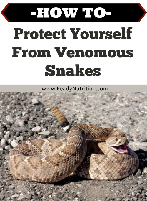 With the return of the warm summer sun comes the return of potentially venomous snakes. If you live in or are visiting an area known for its deadly snakes this summer, you will want to be careful and armed with the knowledge of how to protect yourself from them.