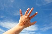 Vivis Henna aus Wellington