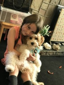 Cockapoo with girl