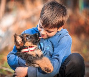 young boy with German Shepherd