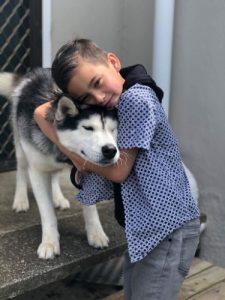 Siberian husky with boy