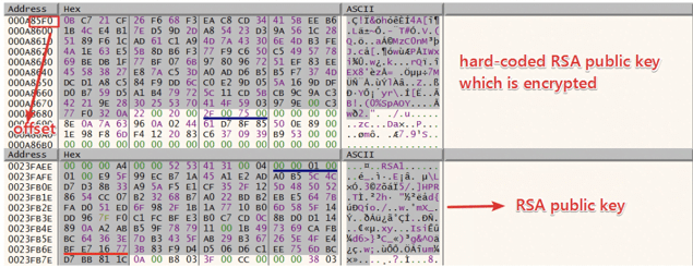 Figure 26. The hard-coded RSA public key which is encrypted and RSA public key