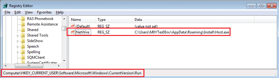 Figure 6. NetWire is added in Auto-run group in the system registry