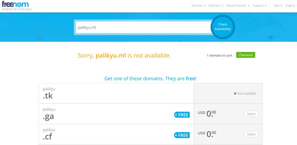 Figure 9. FreeNom results showing the existence of Palikyu.tk