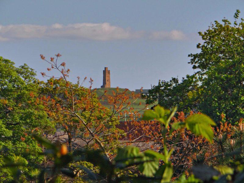 castle hill old.jpg