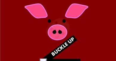 Buckle Up Review