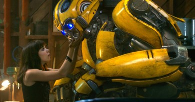 Bumblebee Second Opinion