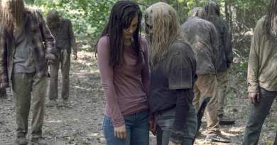 The Walking Dead Season 9, Episode 12 Recap Guardians