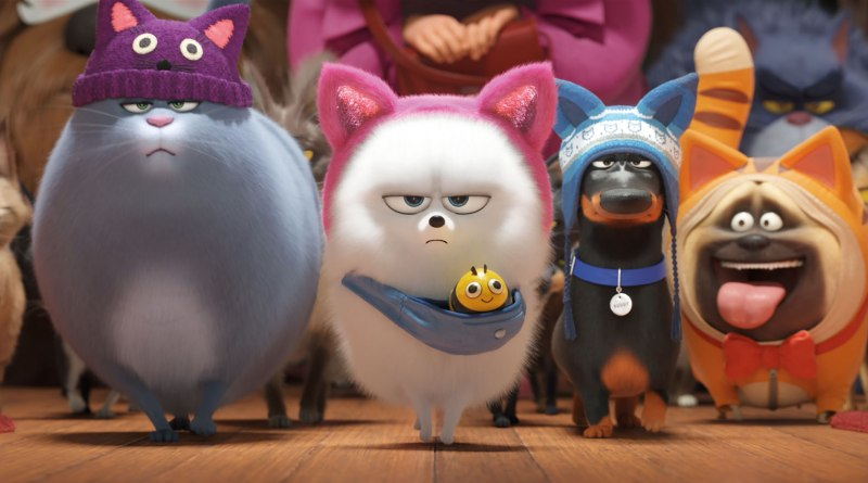 Singuri acasă 2 - The Secret Life of Pets 2 (2019) Online Subtitrat