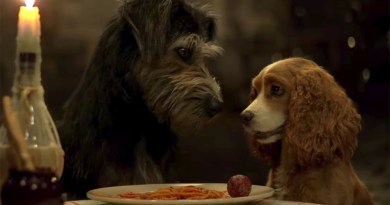 Lady and the Tramp (Disney+) review: A charming but unnecessary remake