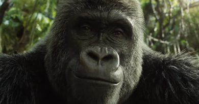 The One and Only Ivan review – a big gorilla given a lightweight treatment