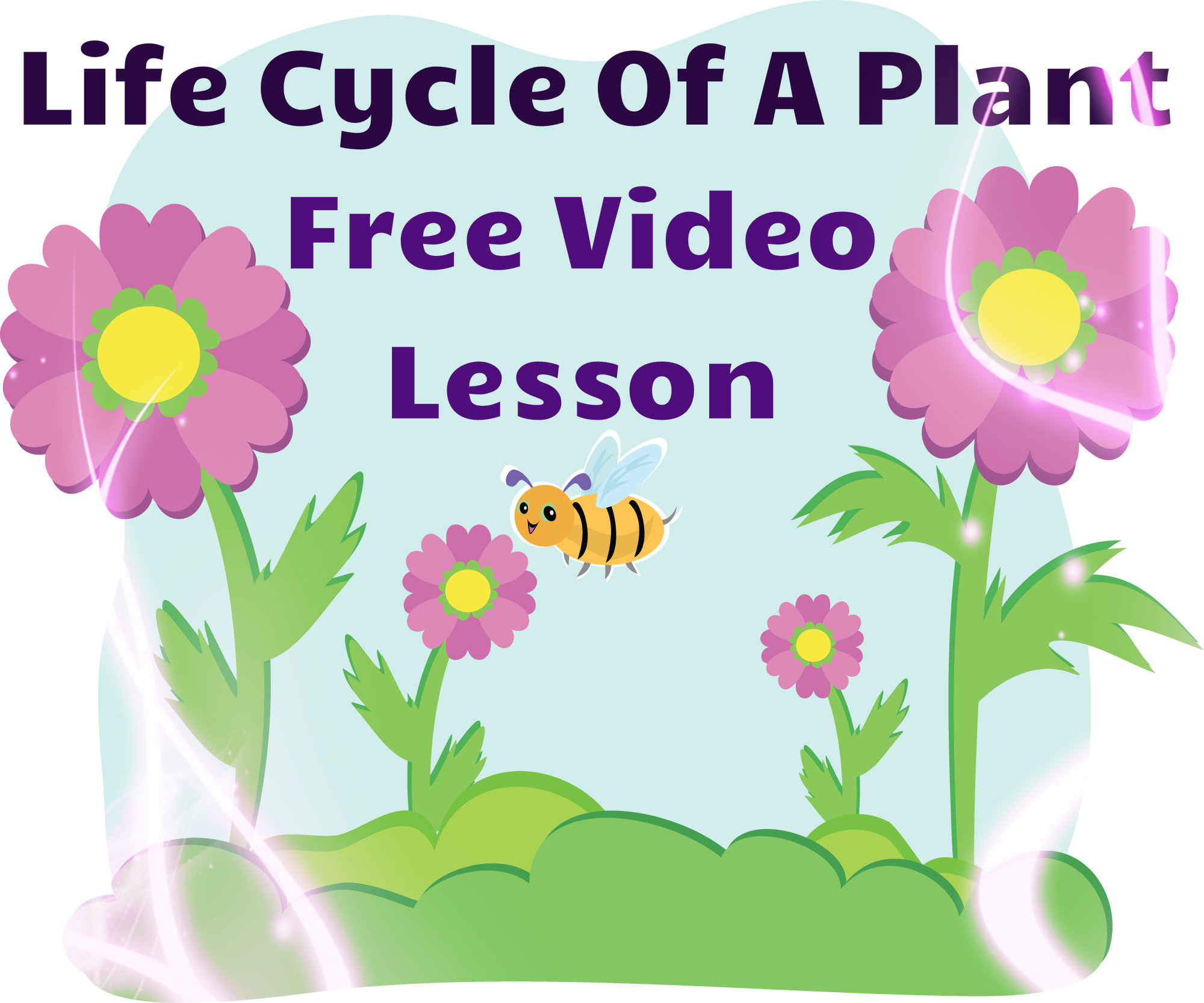Plant Life Cycle Lesson