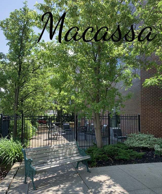 IMG 1636 - Exploring Hamilton's Central Mountain ~ One Neighbourhood at a Time ~ The Macassa Neighbourhood
