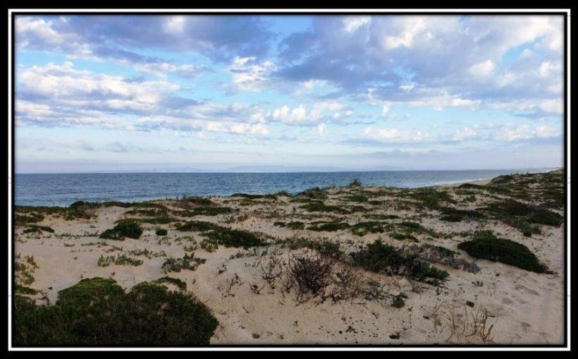 Buying Real Estate in Comporta - Pego Beach