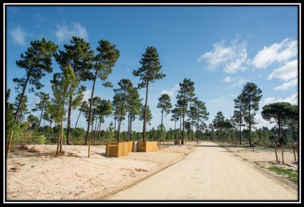 Comporta Land Plot Muda for New Villa