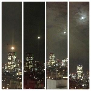 満月 新月 ヨガ